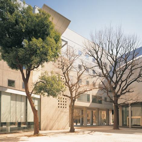 写真:東京大学先端科学技術研究センター